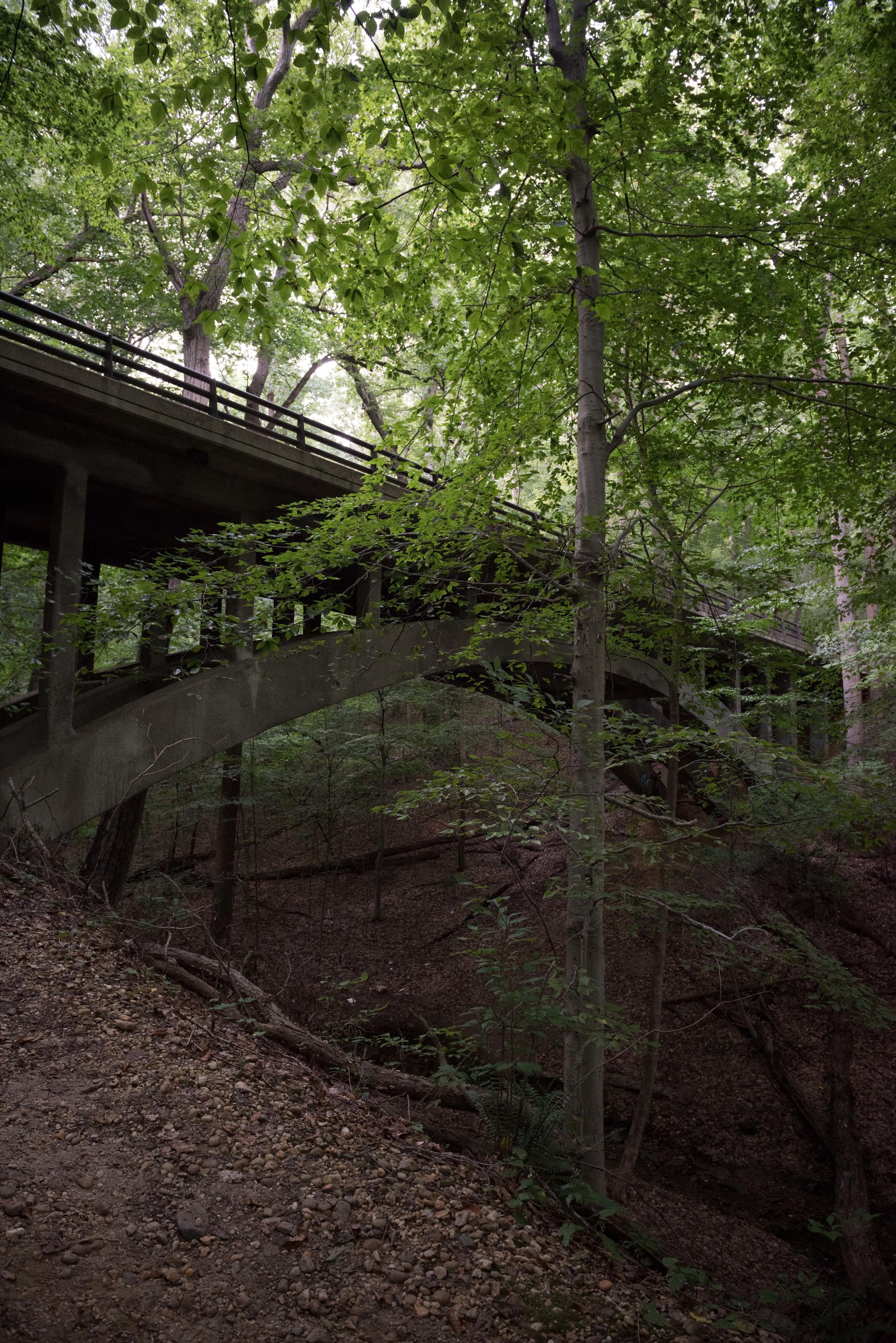 rock-creek-park-washington-dc-7