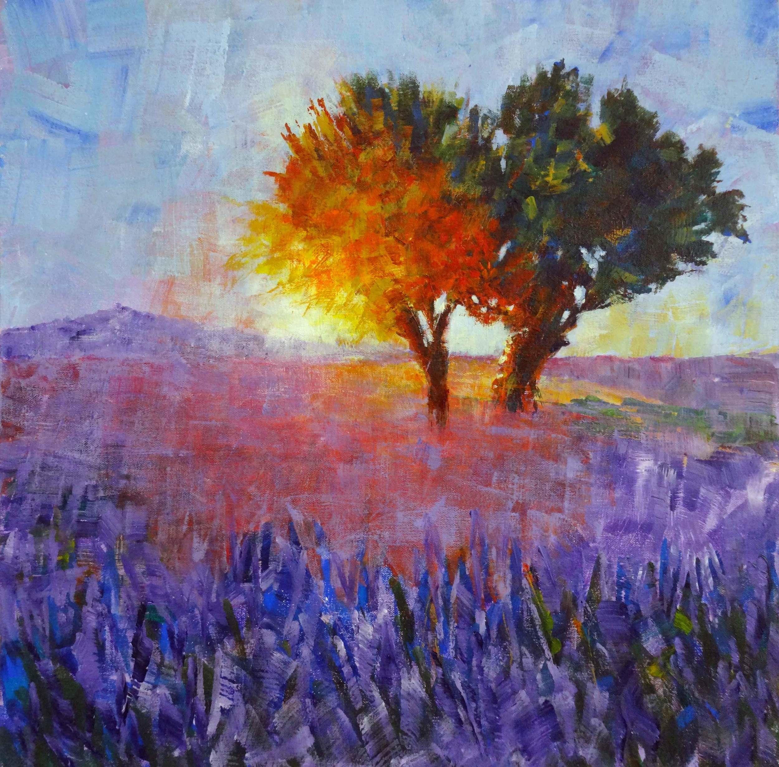 Fields of Violet