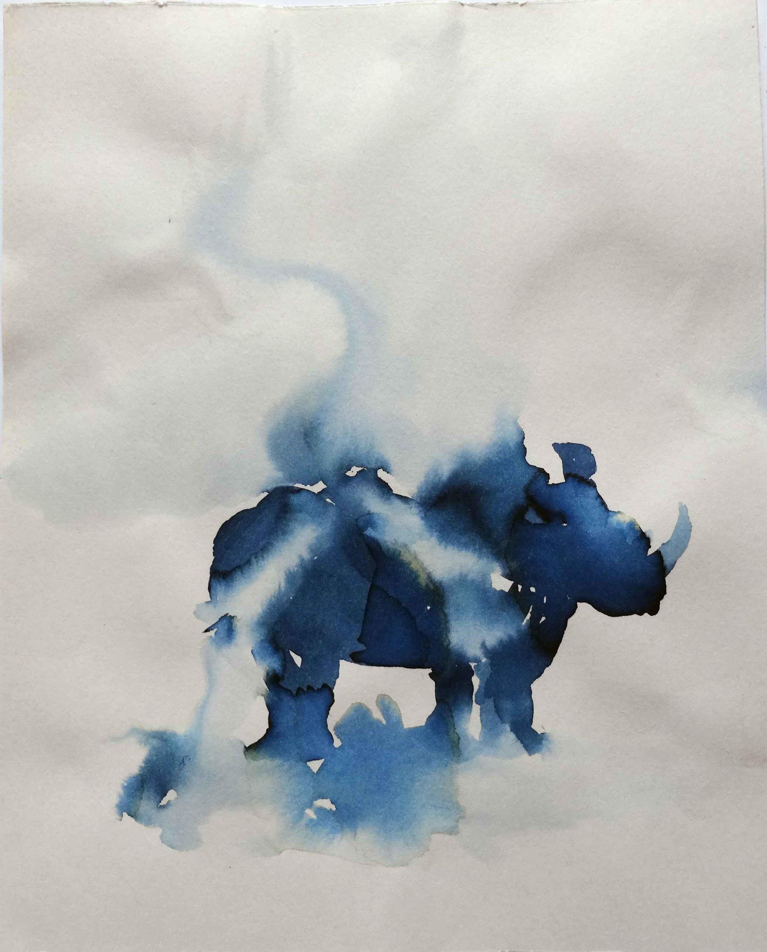 Blue Rhino 1