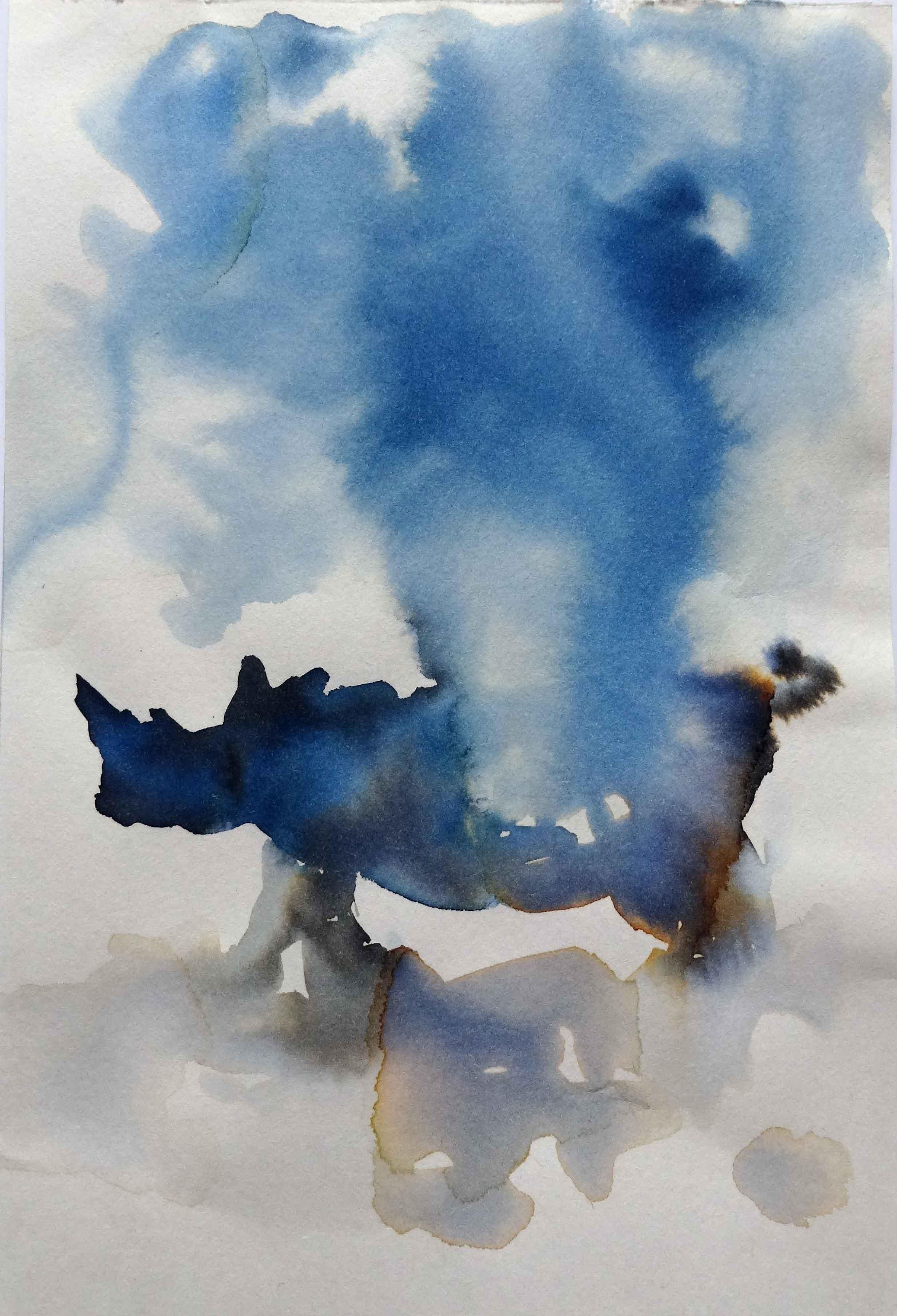 Blue Rhino 2