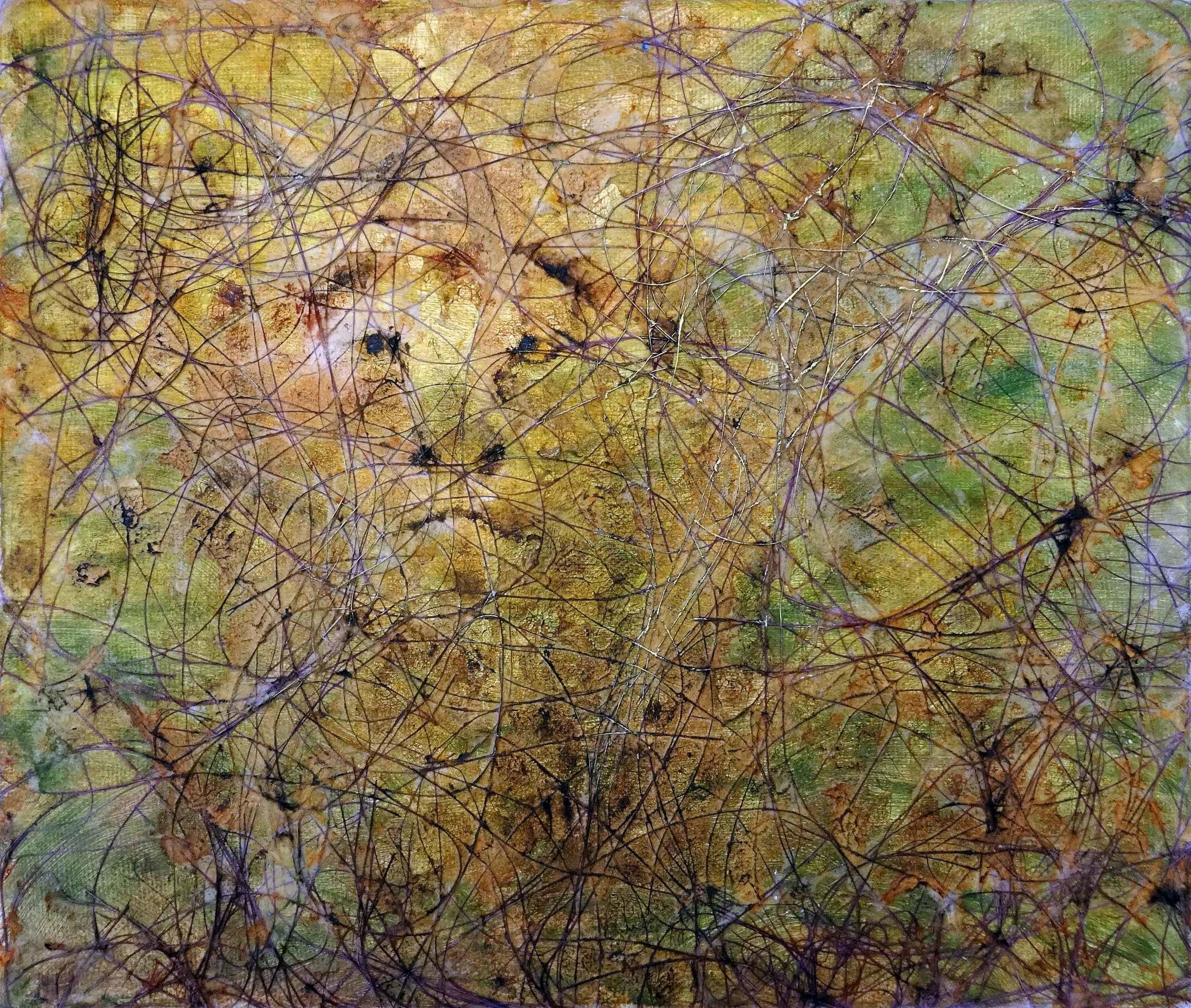 Waiting Lion 2