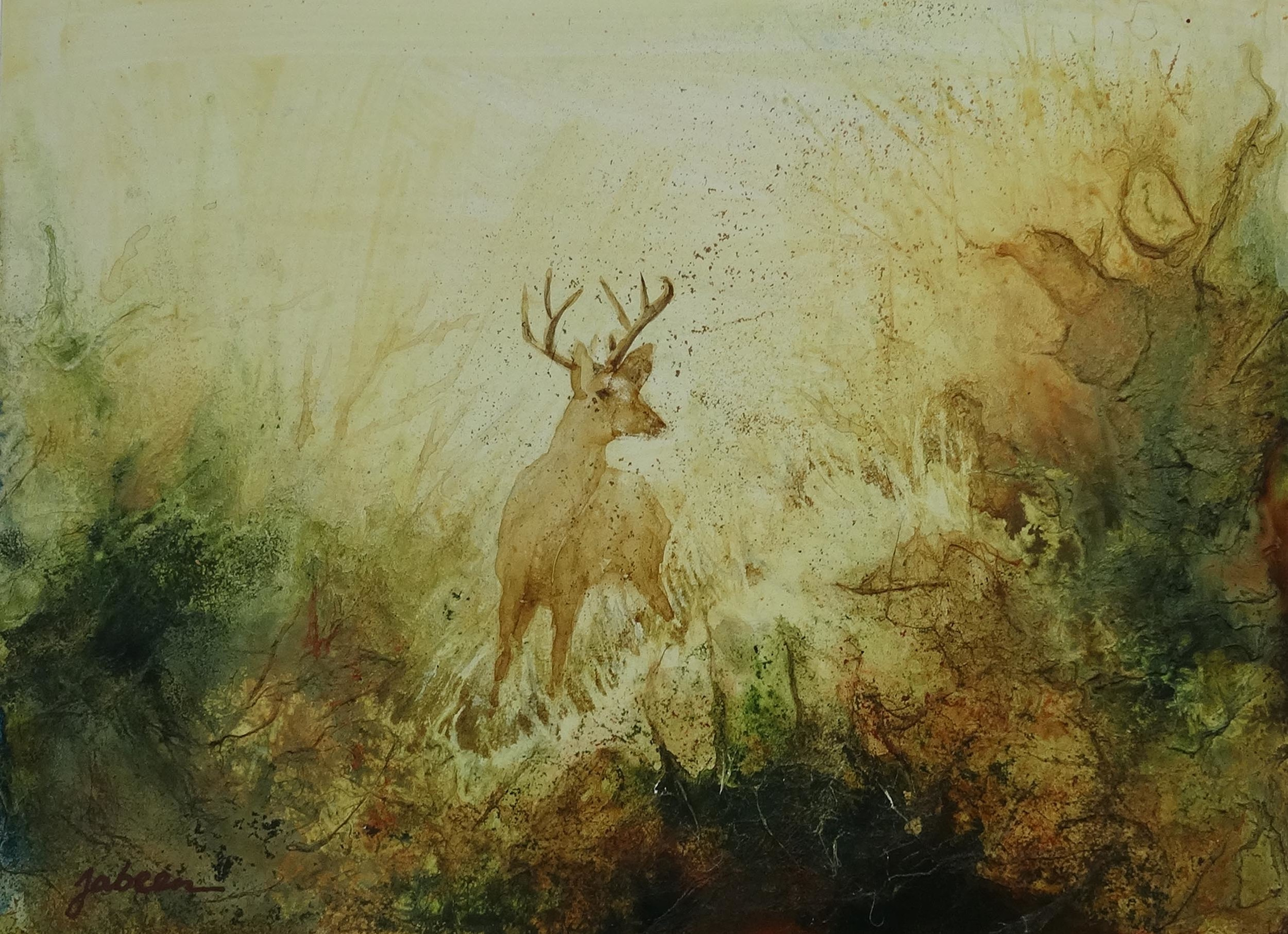 Young Stag, Richmond Park