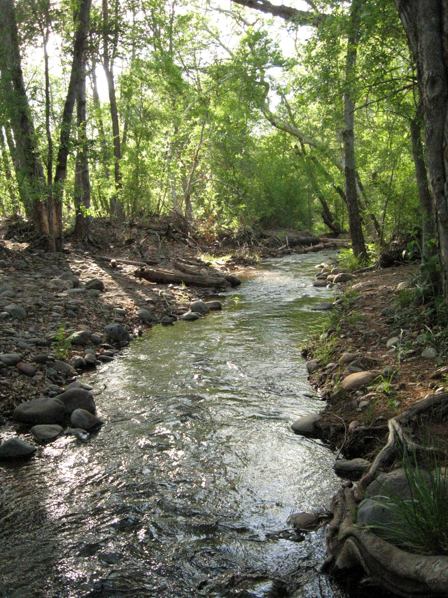 the-way-sedona-creek.jpg