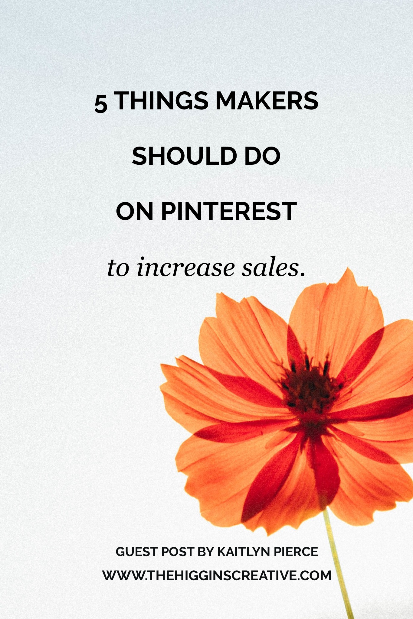5 things you should do on Pinterest to increase sales. Pinterest is a great social channel to use when selling products and services, here are some tips on how to improve your Pinterest profile for business and increase traffic and sales.