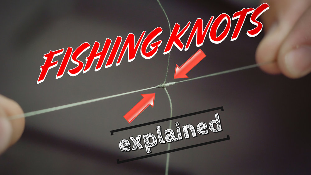knots web final.jpg