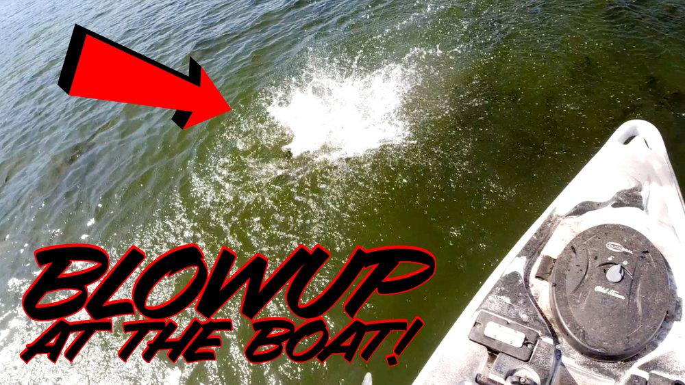 Kayak Web copy.jpg