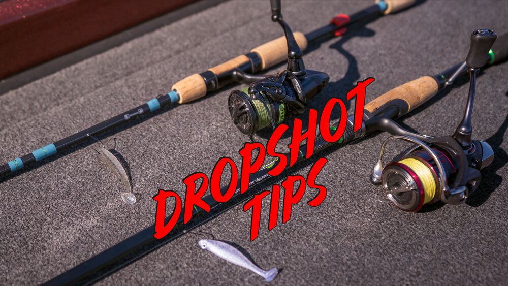 The Best Dropshot Trick For Fall Bass!