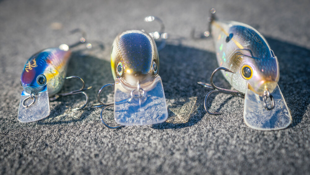 Squarebill Crankbait Tricks To Catch Fall Bass