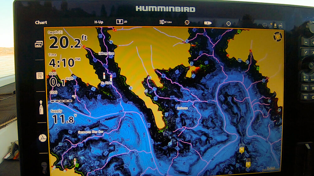 Where do fish go in the winter web.jpg