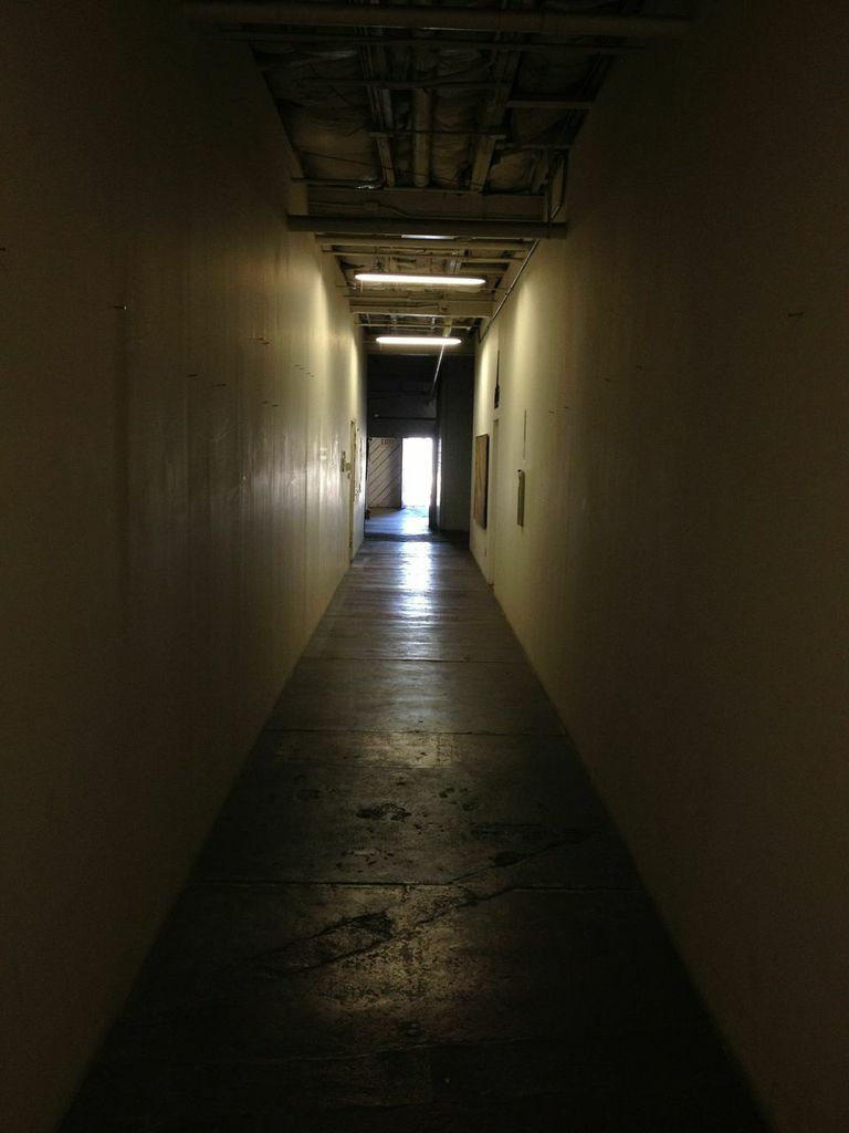 Here's the hallway in the building where I had my studio, very Quarantine-y.