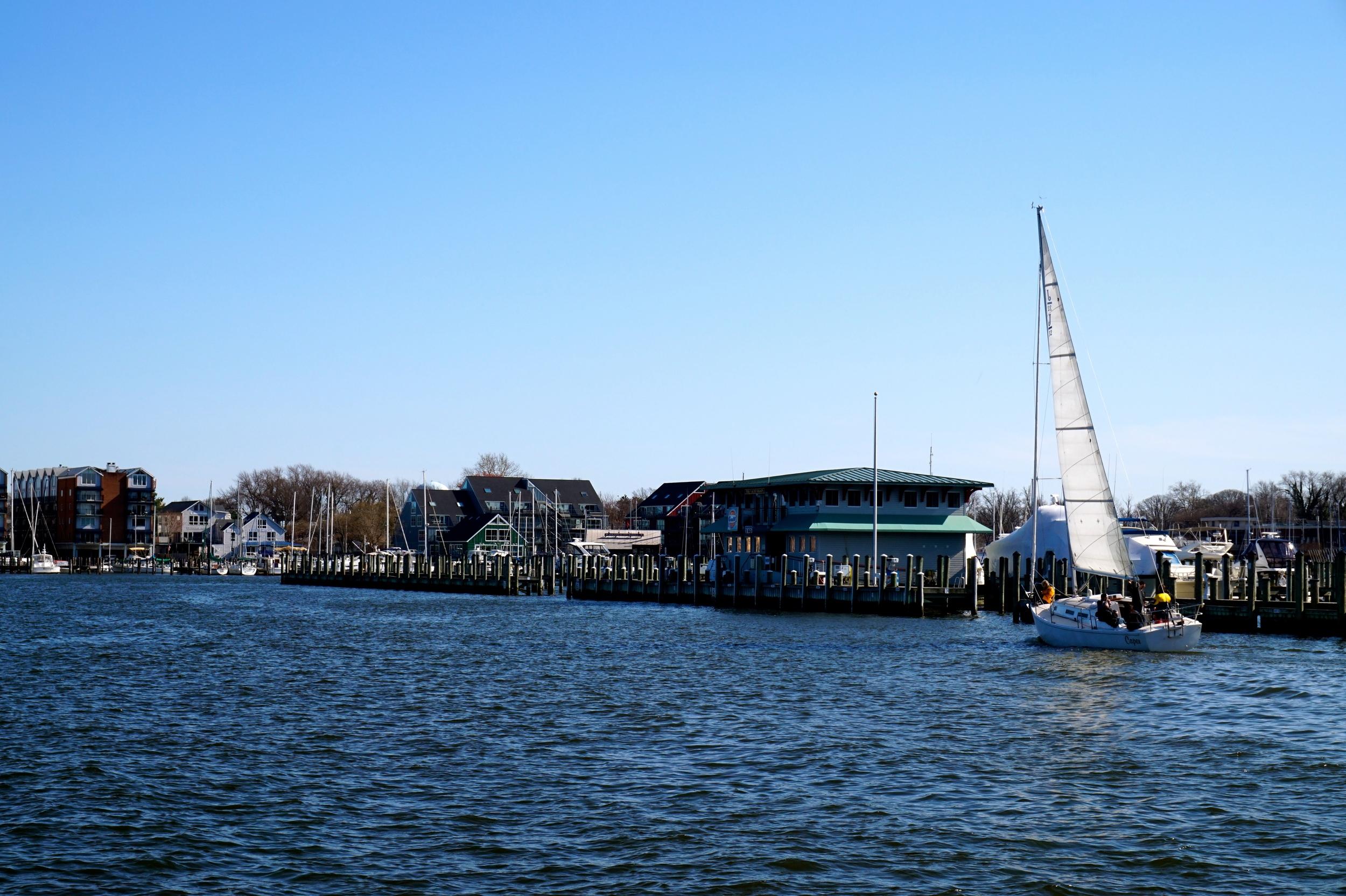 annapolisboats.jpg