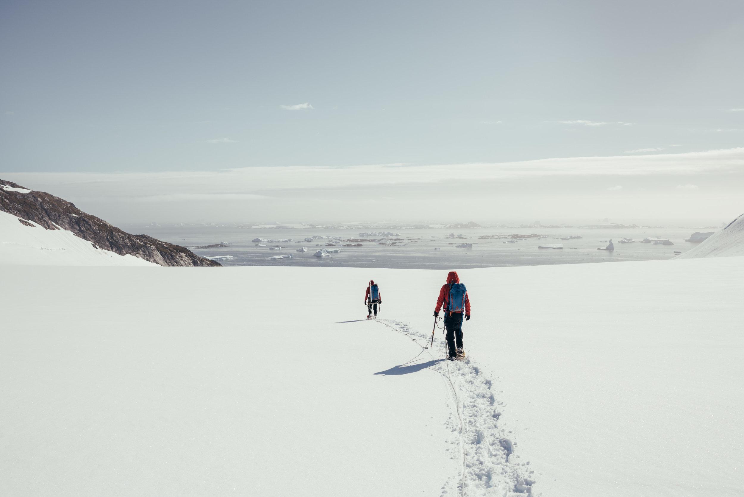 Traversing the Wiggins glacier.jpg