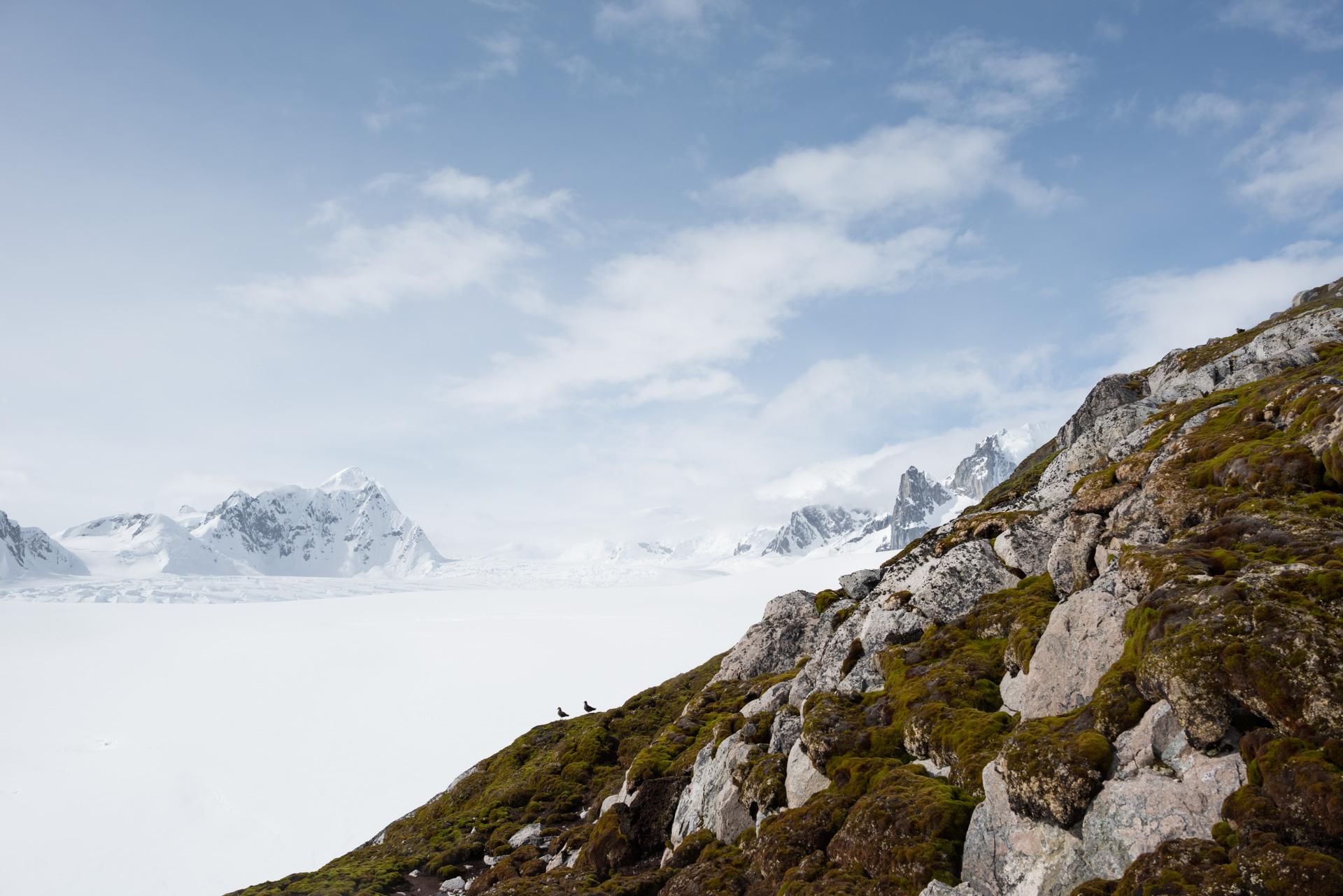 Antartica (95).jpg