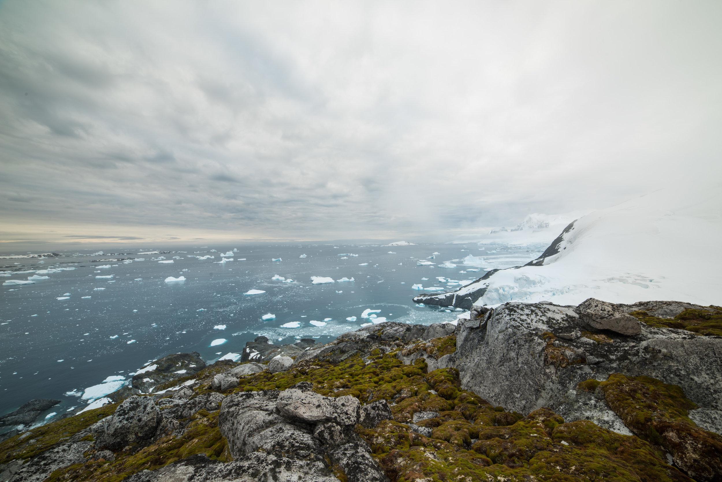 Antartica (124).jpg