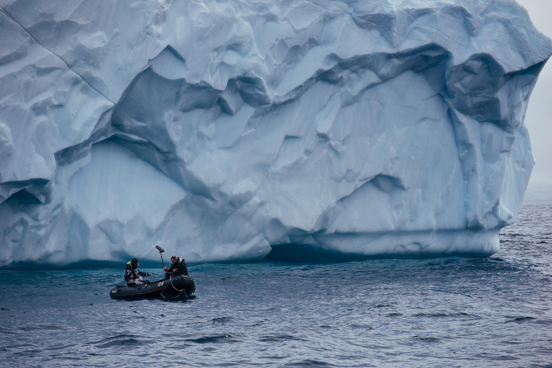 Antartica (142).jpg