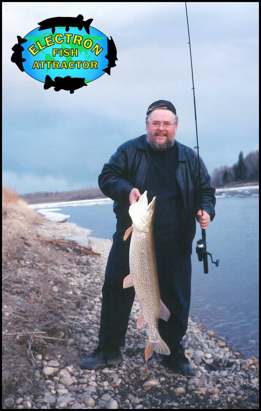 A quick photo of Rick Crozier with this North Saskatchewan River beauty before being released.