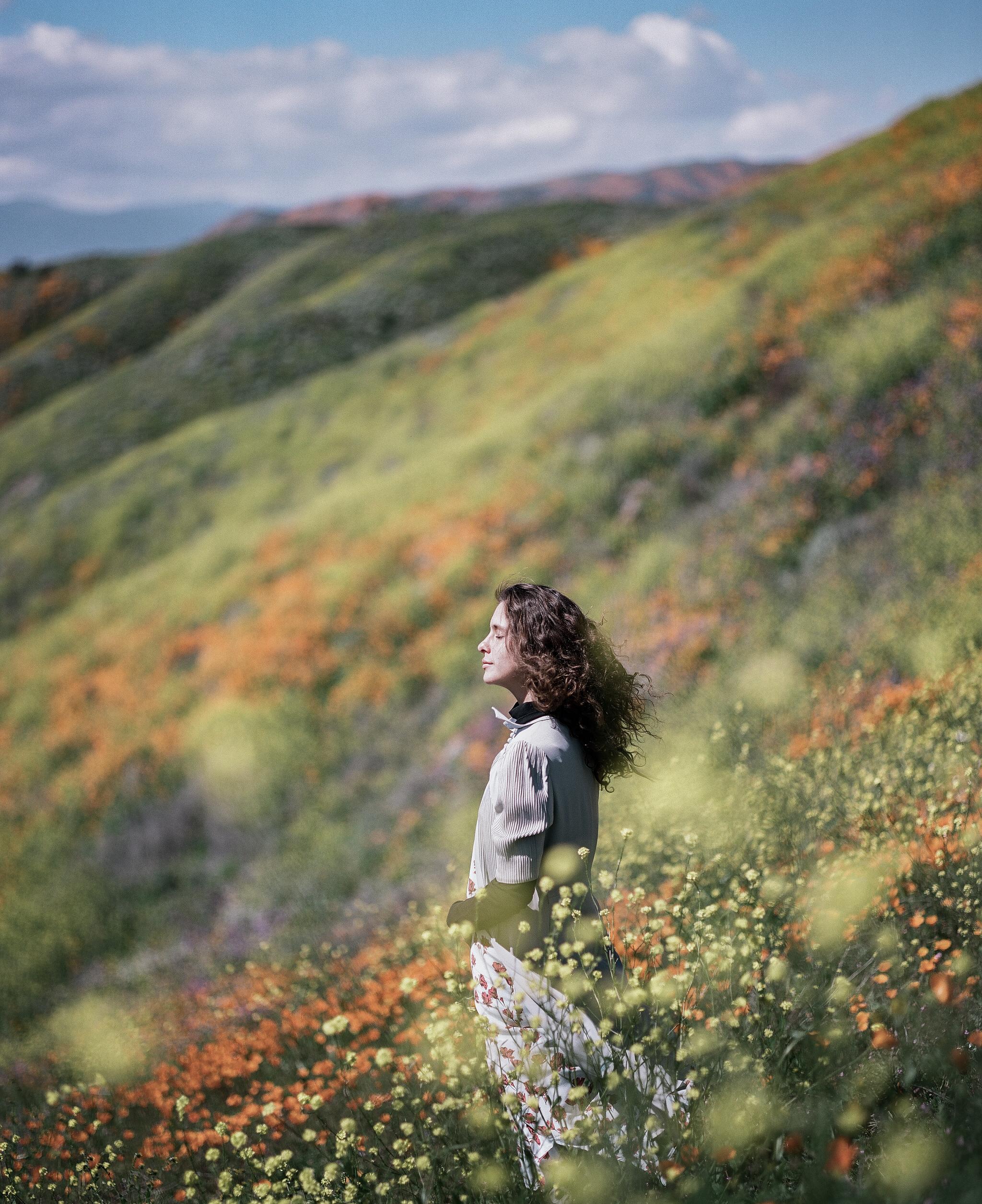 walker canyon, super bloom.  on film.