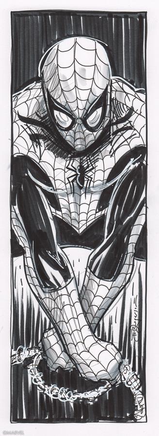 Spider-Man Ink.jpg