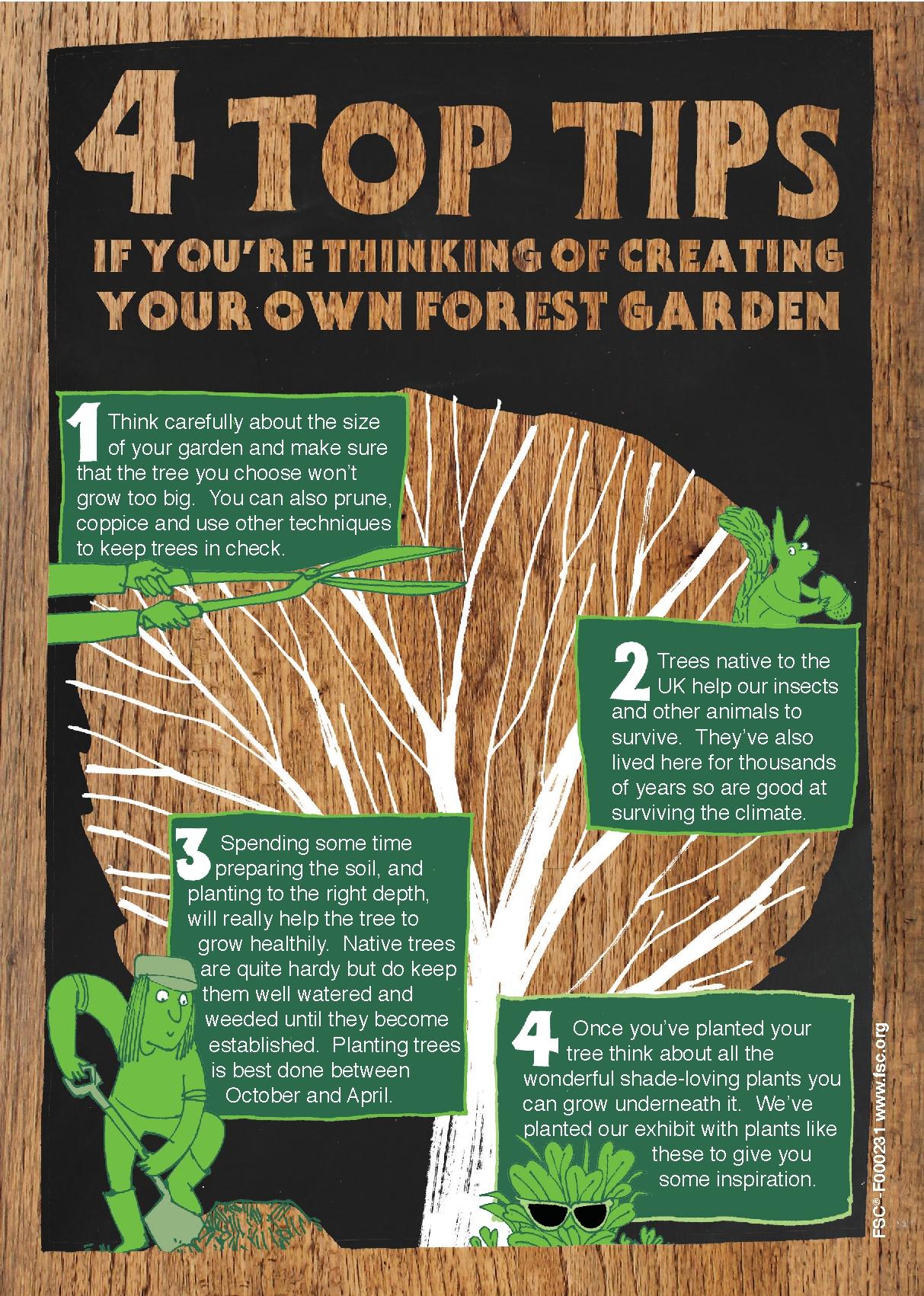 The Forest in your garden - kirstidavies.com