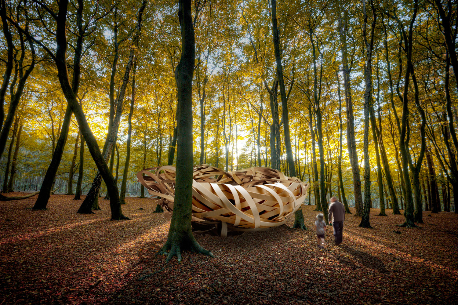 Steam bent woodland nest Kirsti Davies and Giles Thaxton