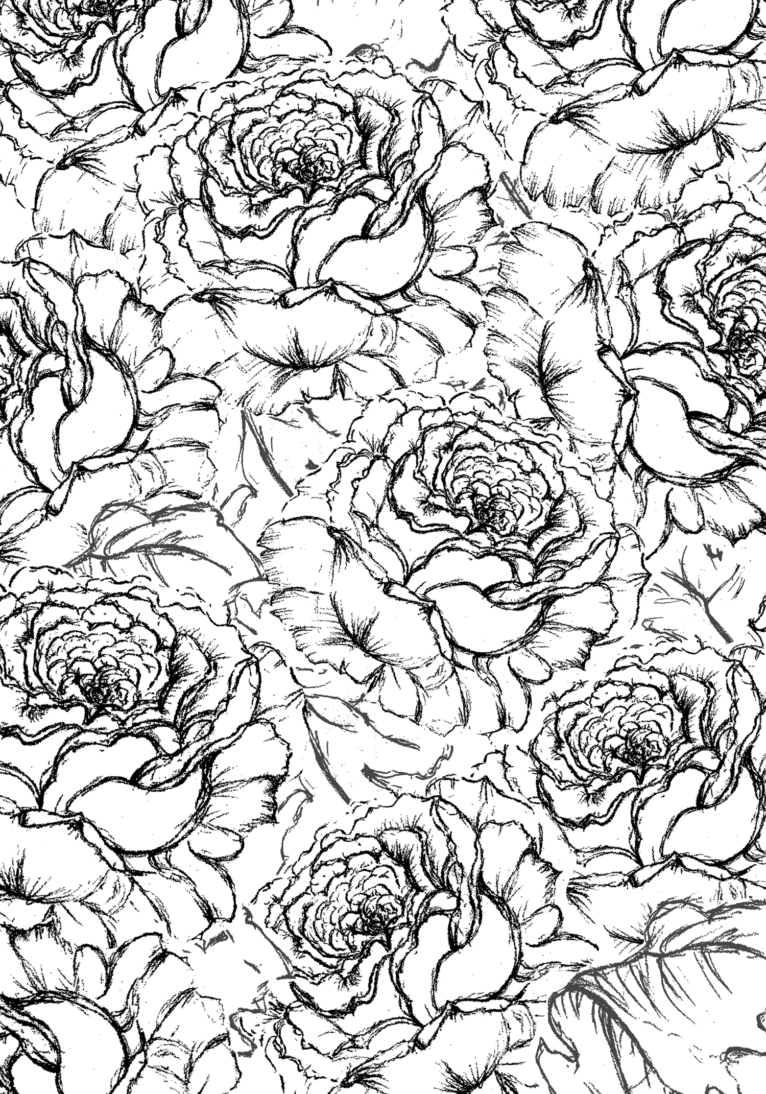 LINED_FLOWERS.JPG