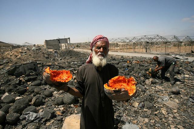 Meleh Al Shaer's farm was completely destroyed a few days ago. Photo Credit: Oxfam International