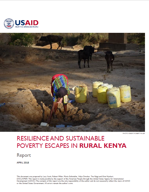 Kenya report USAID.PNG