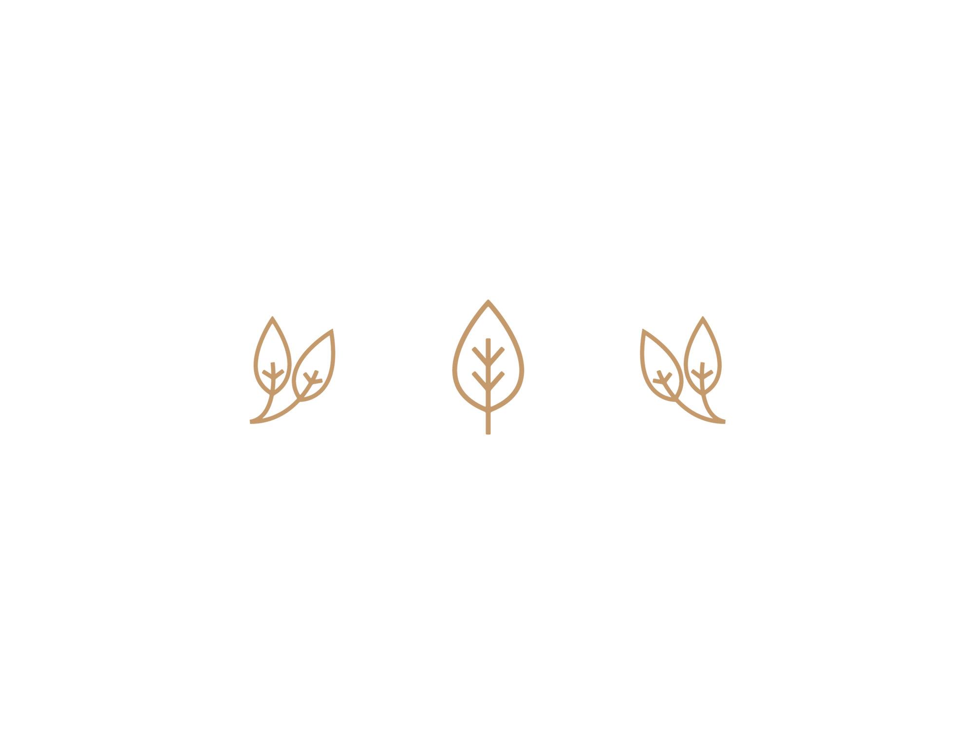 Leaf-Symbols-Vectors.jpg