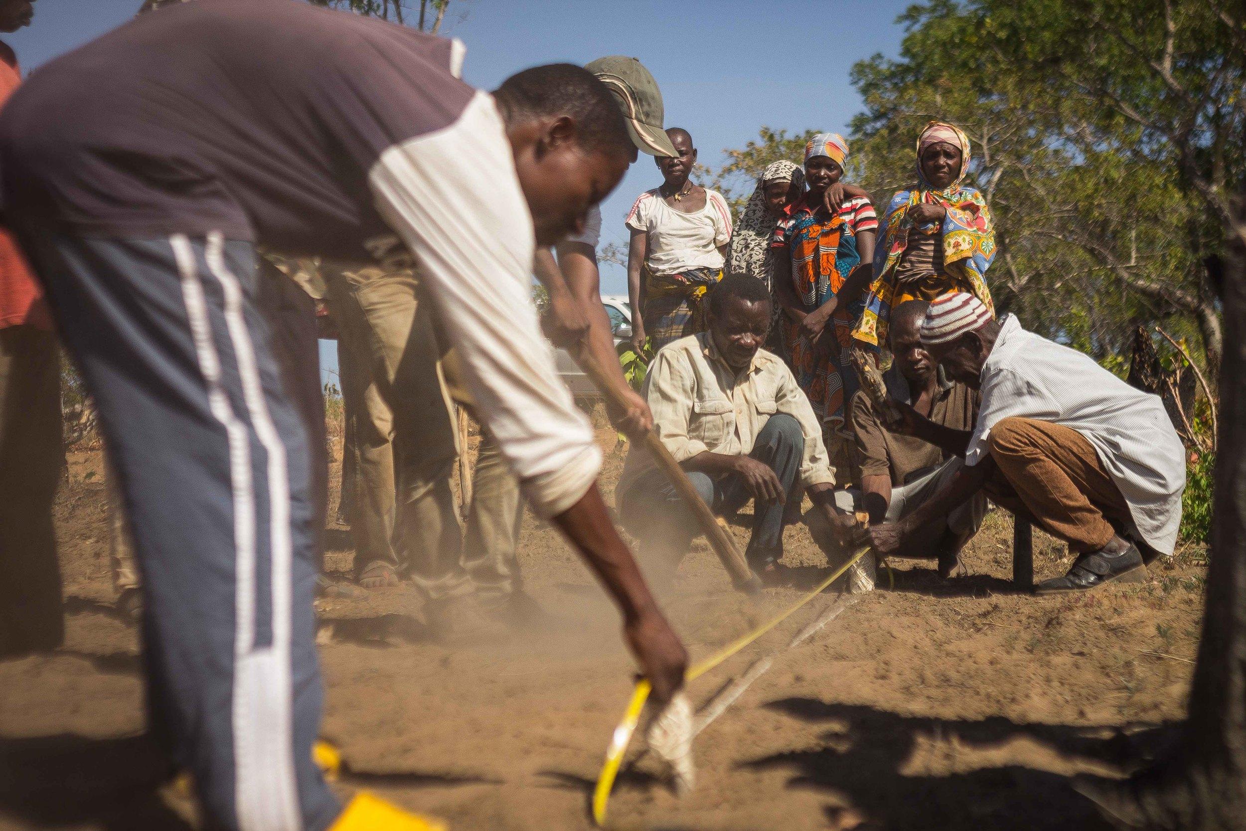Mogovolas district, Nampula   province  – Cashew farmers learn to establish a local nursery |  Produtores aprendendo a estabelecer um viveiro local