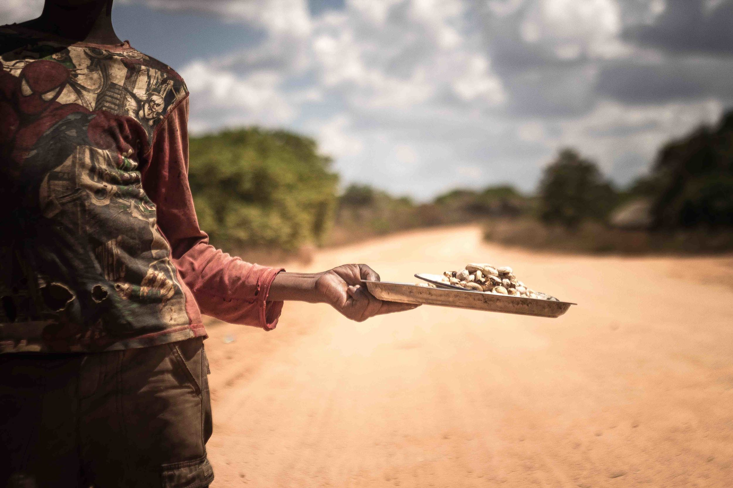 Mogovolas district, Nampula   province  – Along a major road, a youth sells cashew nuts that have been processed in the traditional manner |  Um jovem que processa a castanha de caju tradicionalmente e vende ao longo da estrada