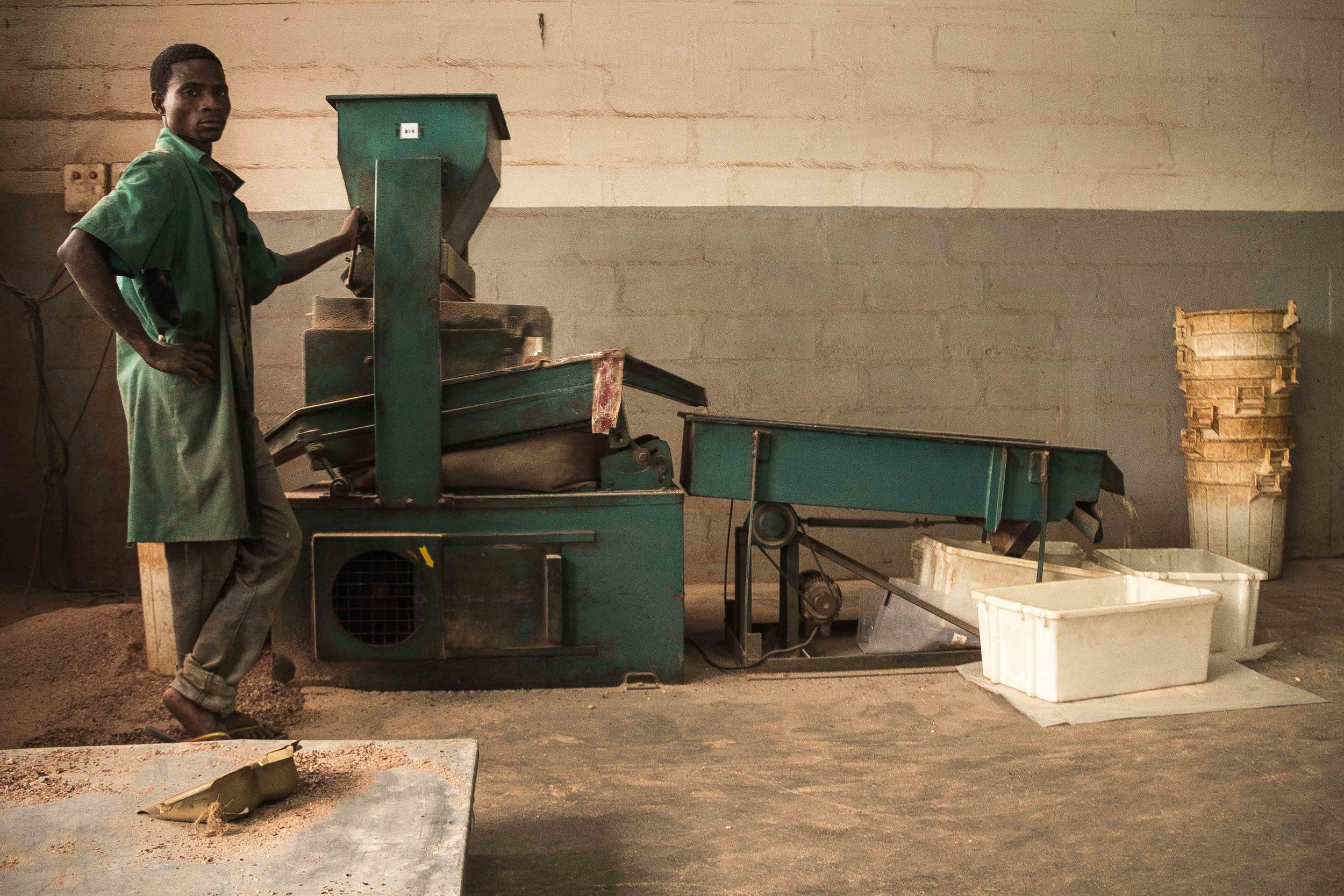 Anchilo district, Nampula province  – A worker at the Condor Nuts factory waits for cashew nuts to pass through the machine |  Um trabalhador na fábrica da Condor Nuts espera a castanha de caju que passa pela máquina
