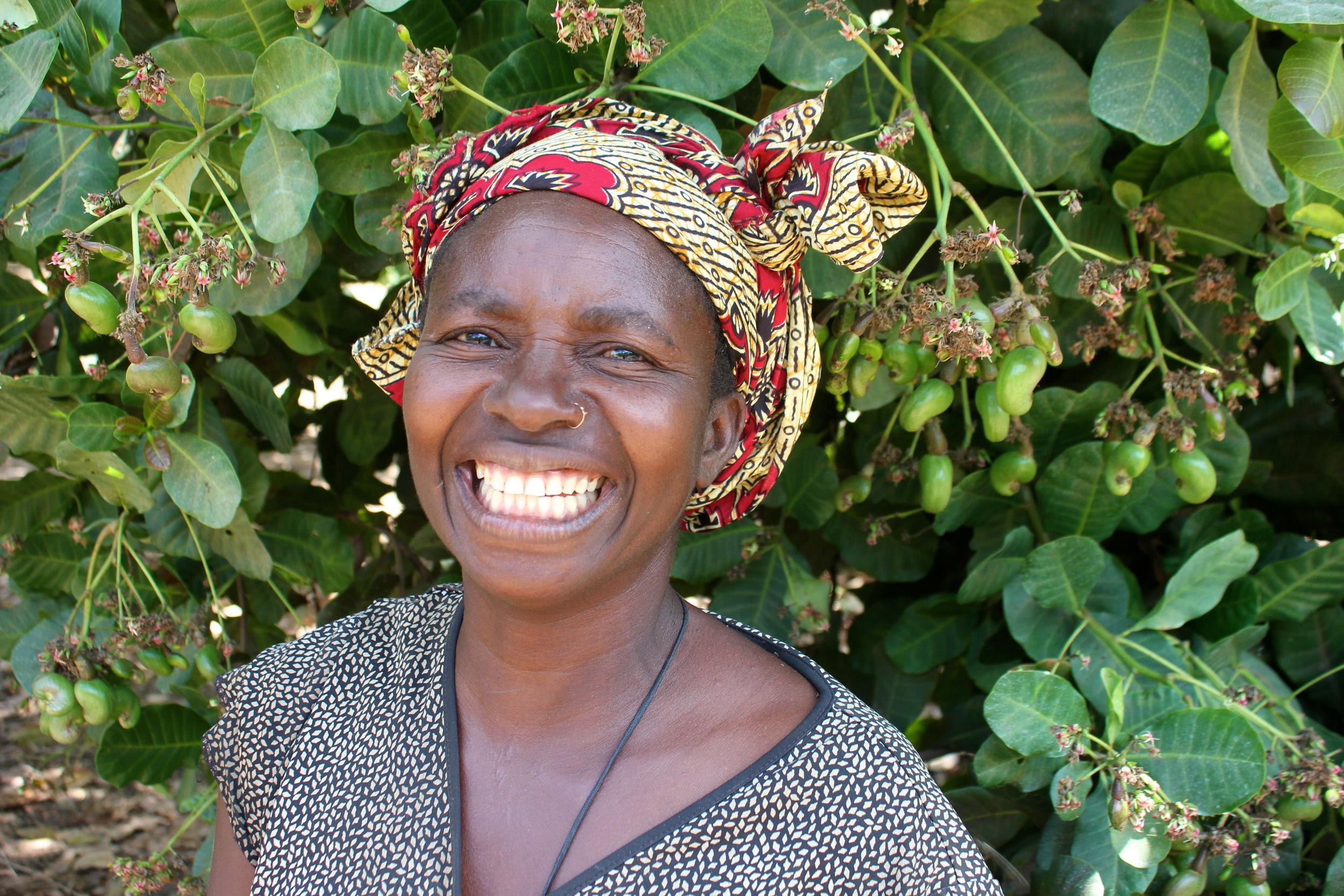 Nangade district, Cabo Delgado province  - MozaCajú farmer Alda Filomena André enjoys showing off her young cashew nuts that have begun to grow |  MozaCajú produtor Alda Filomena André gosta de mostrar seus jovens castanha de caju que estão a crescer