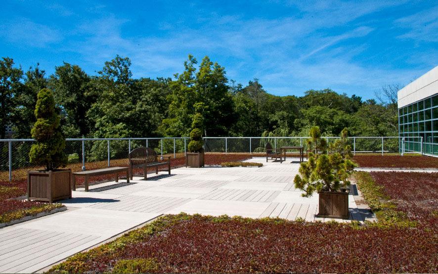 Endicott-Gallery-Green-Roof2.jpg