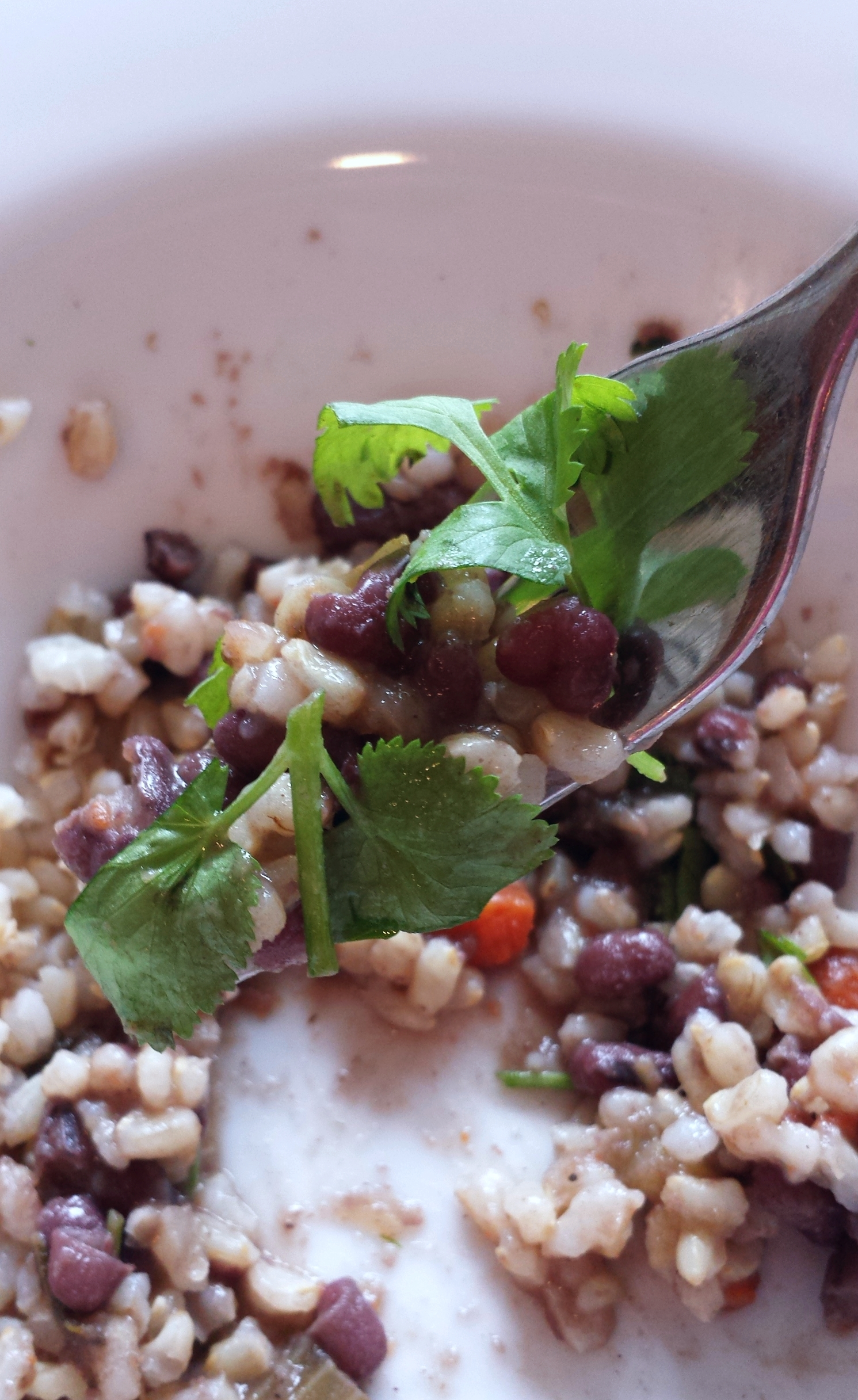 Adzuki beans with fresh cilantro & brown rice