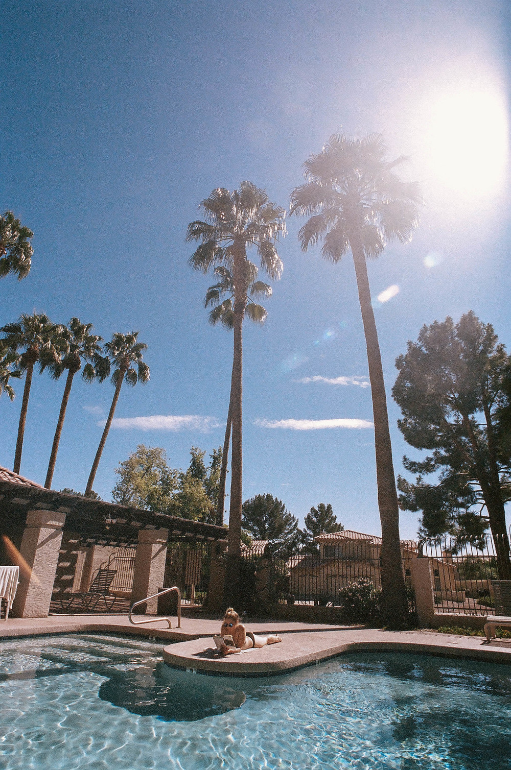 Lilly in Arizona