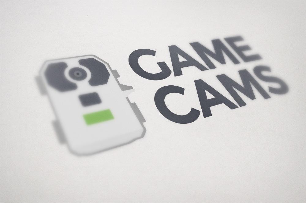 gameCams_mockup.jpg