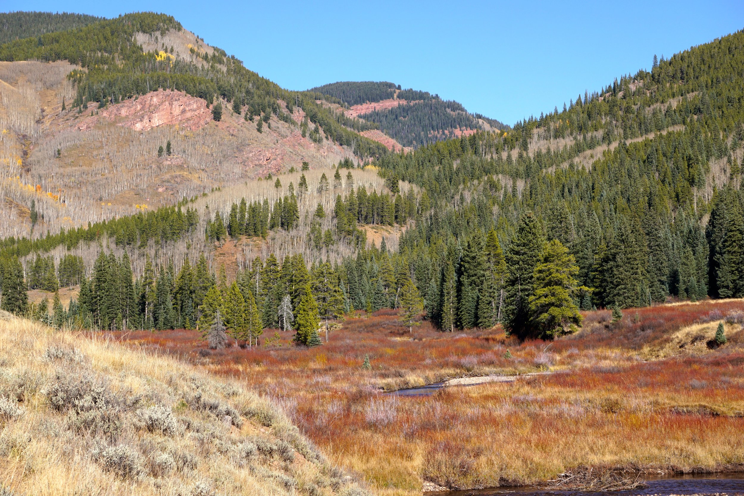 Cement Creek area is proposed for a combination of special management areas and wilderness to maintain access for current recreation and ensure a high quality recreation experience, while protecting areas that see very little non-wilderness uses.