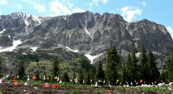 Research site below Gothic Mountain. Photo by Laurel Runci