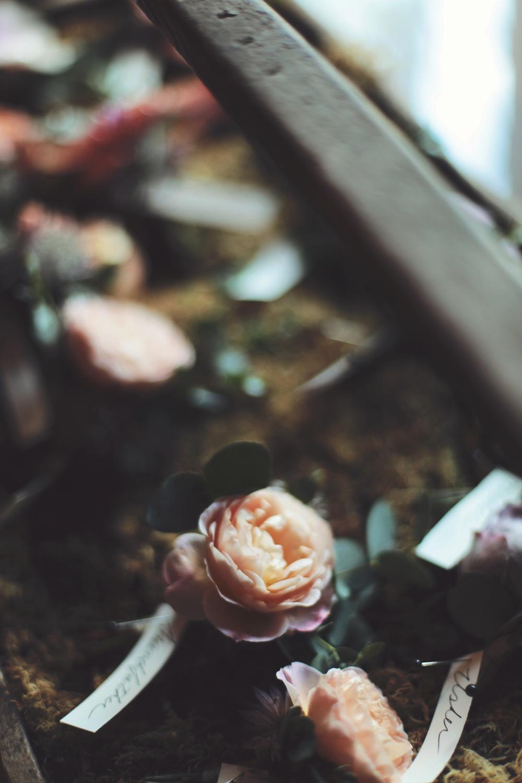 autumn-gatsby-wedding-21.jpg