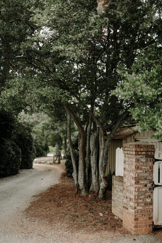 vinewoodstables-5.jpg