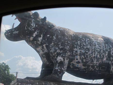 faut faire attention a l'hippopotamus de Bamako    watch out for hippos!