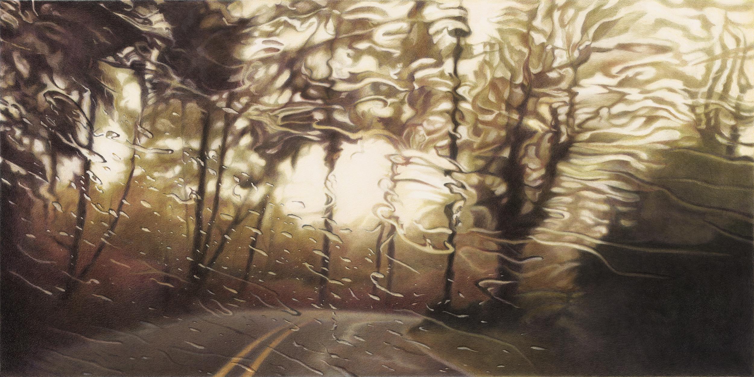 Elizabeth Patterson,  Idleman Road, 3PM, 2010, color pencil, graphite and solvent on Strathmore Bristol Vellum, 20 x 34 inches