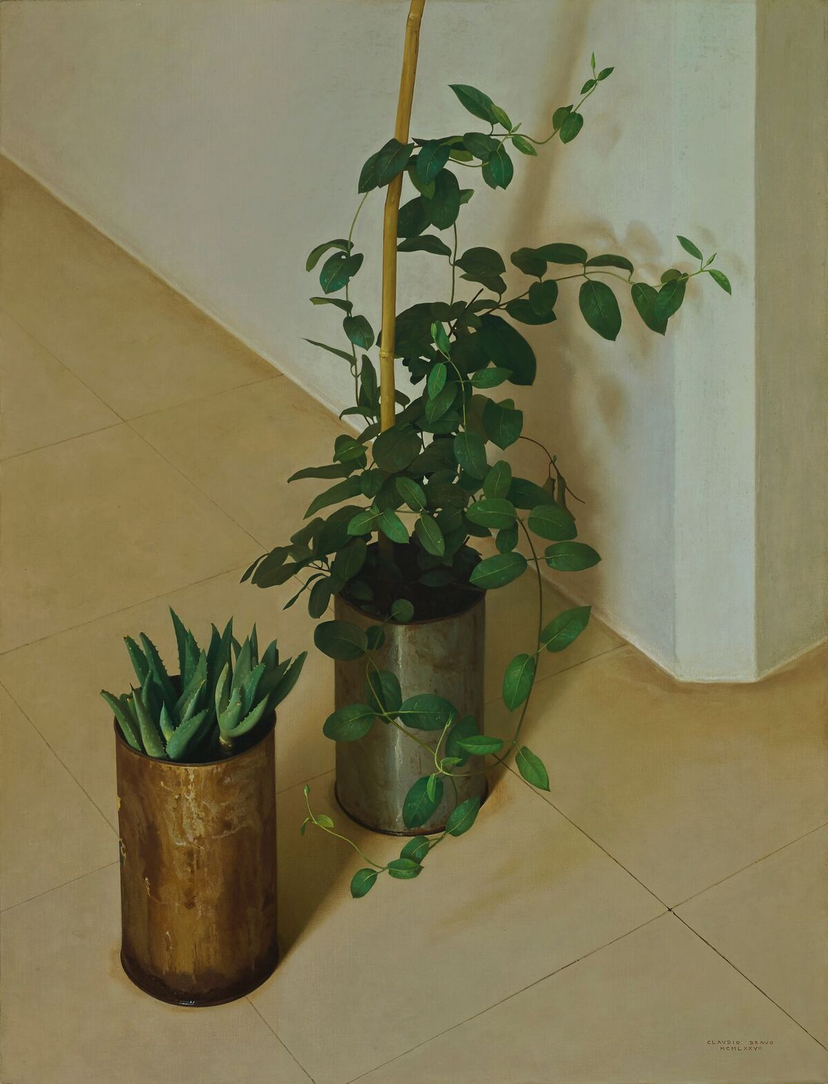 Claudio Bravo (1936-2011)   Dos Plantas , 1977      oil on canvas 35 x 27 inches;  88.9 x 68.6 centimeters