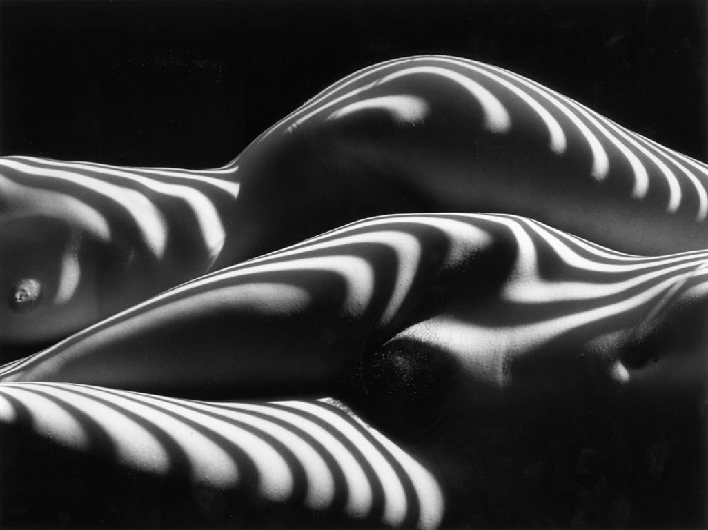 Lucien Clergue (1934-2014)   Deux Nu Zebres, New York , 2005 Ed. 2/30  silver gelatin print 12 x 16 inches; 30.5 x 40.6 centimeters