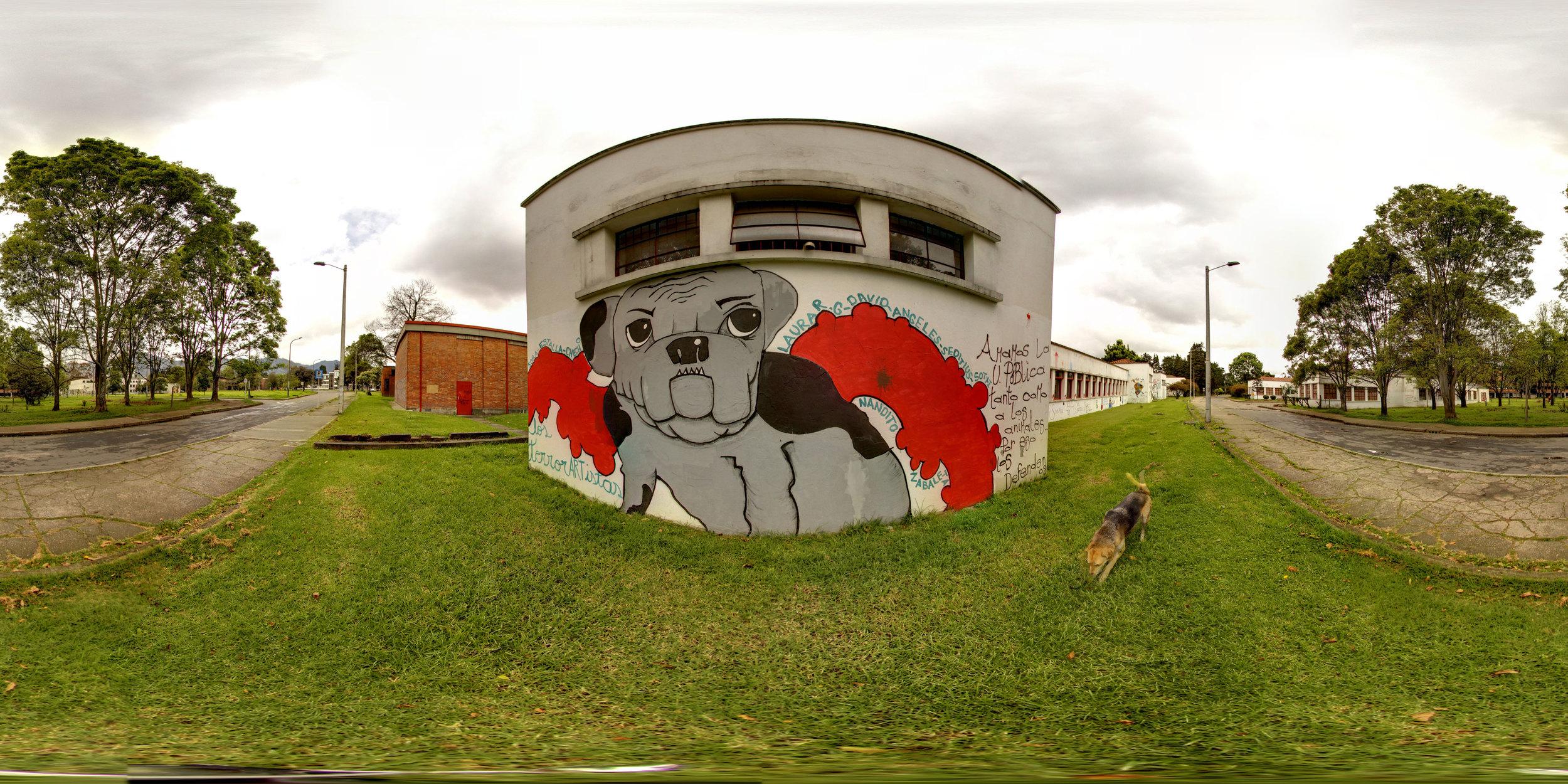 360° Dog Grafiti at the National Universidad de Bogotá