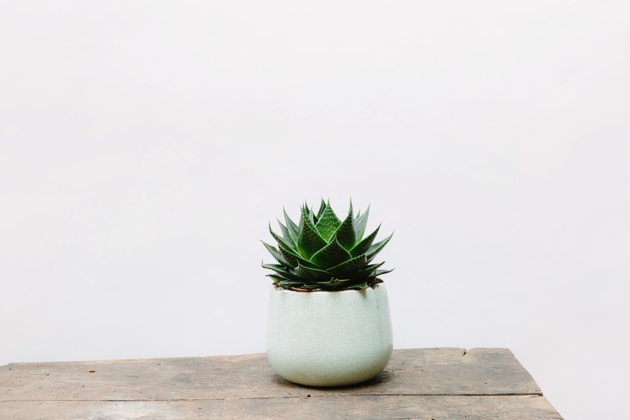 Teal crackle ceramic pot  - Trouva - £22 (H 18cm x W 21cm)