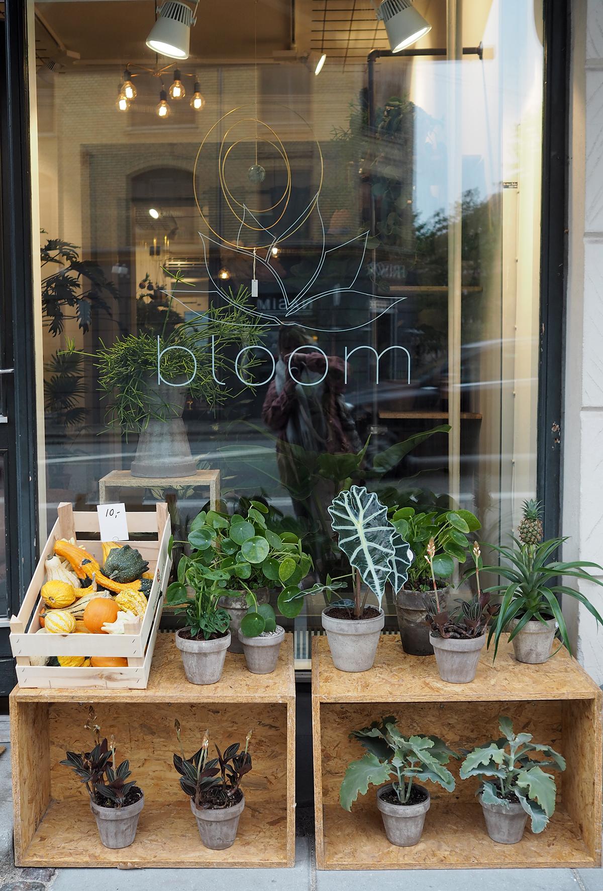 Bloom, Copenhagen