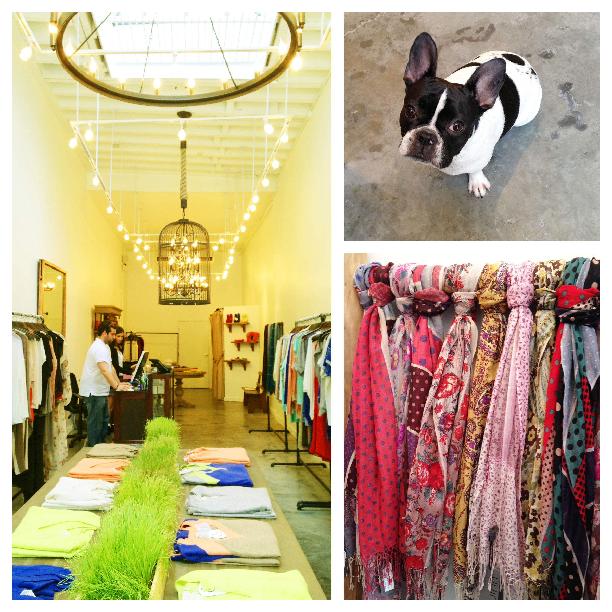 Quinn  181 Orchard Street New York, NY 10002  This beautiful clothing store, Quinn is only steps away from us. They have a wide range of luxury and modern styles for women which you will enjoy to choose from. A friendly french bulldog will surely make your visit more memorable one!