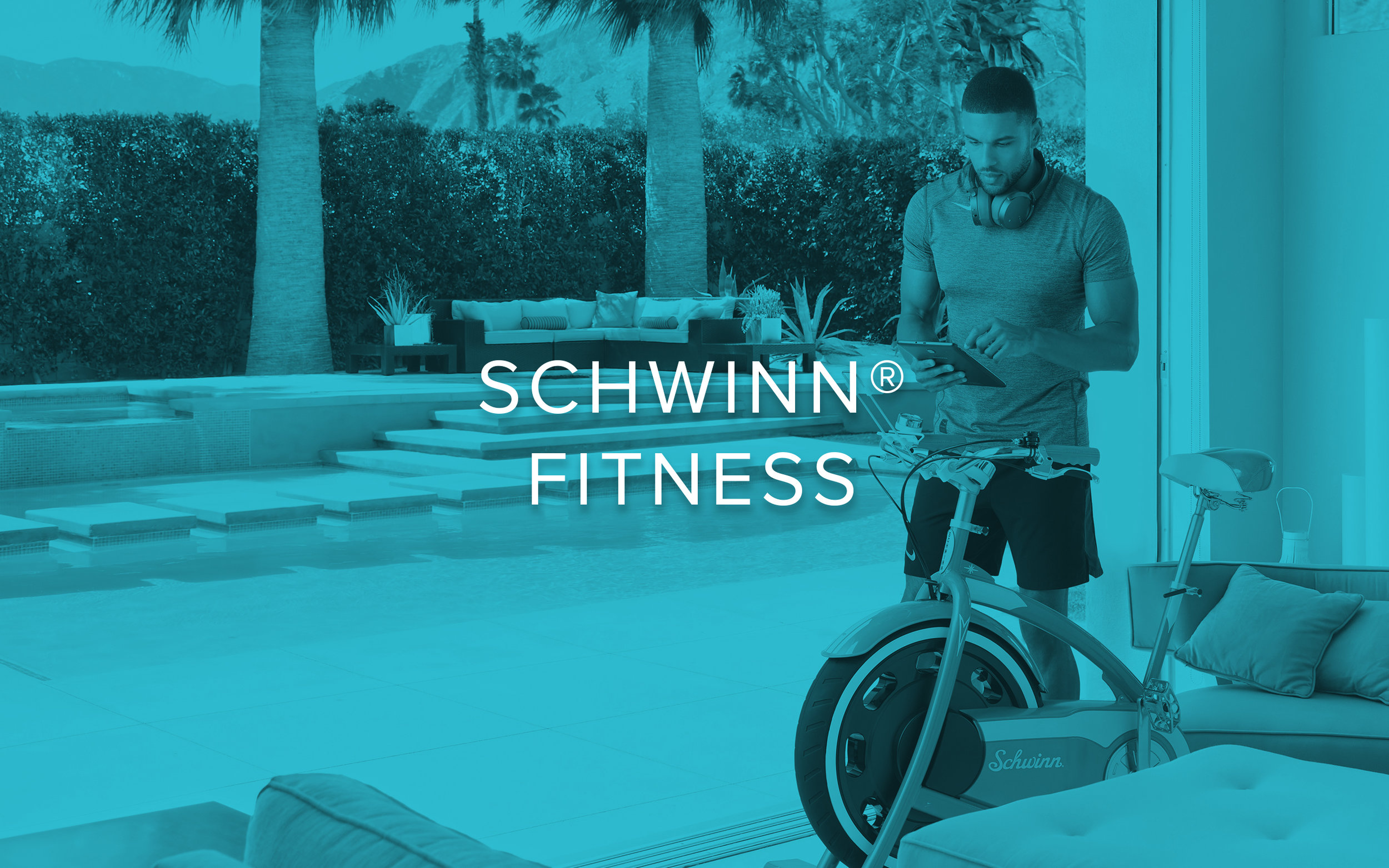 Website_Brand_Menu_Schwinn.jpg