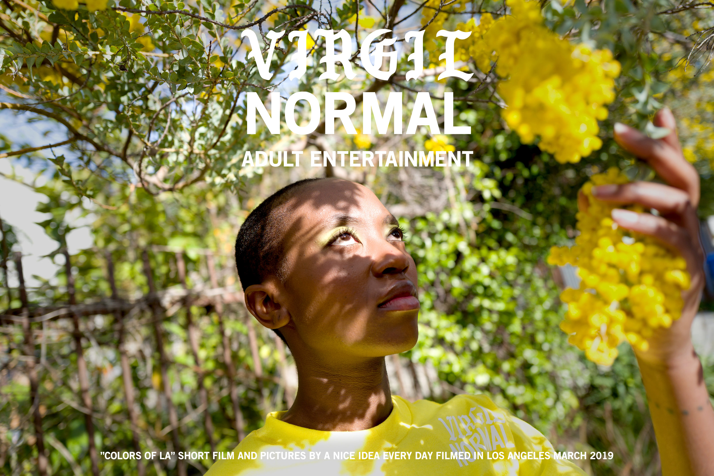 "Virgil Normal ""Colors of LA"""